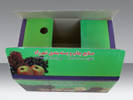 Fruit&Vegetable Packaging Box